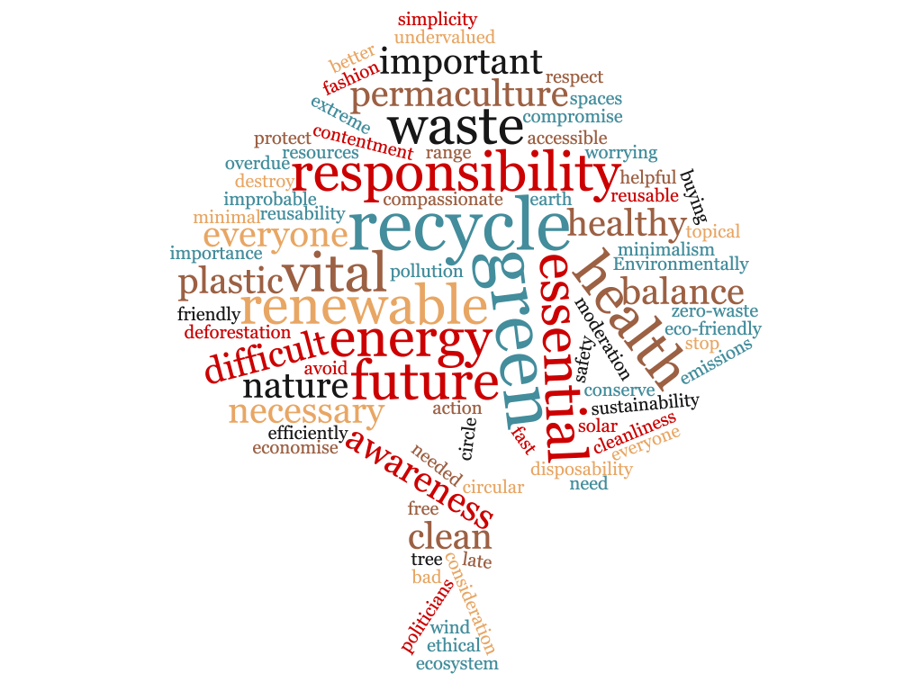 Word cloud detailing words that students would use to describe environmental sustainability