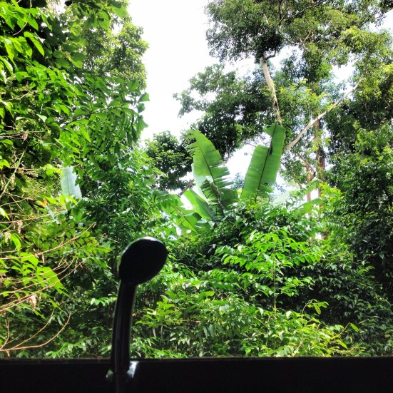 The outdoor showers at Our Jungle House are gorgeous, but you need to put your shampoo away or the monkeys will steal it.