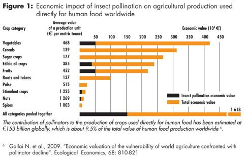Economic impact of insect pollination on agricultural production used directly for human food worldwide.