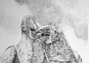 """Nesting #6, graphite on paper, 6"""" x 12"""", 2018, $750 without frame, $900 with frame"""