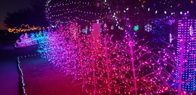 John Storms illuminated trees, and a sleigh with reindeer