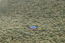 We camped in the middle of the tussacs. Photo (c) Kayleigh Jones