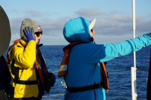 making marine mammal observations from the ship's deck