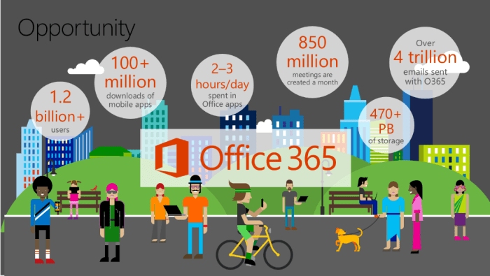 office365 stats