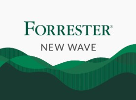 Recognized in the Forrester New Wave report for Computer Vision services
