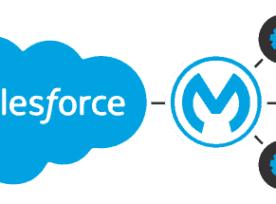 Salesforce and MuleSoft Integration