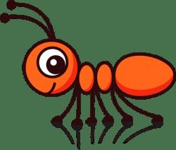 Ant and Nexus