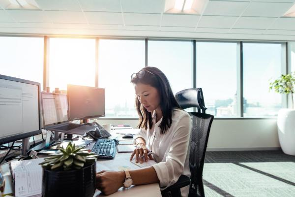Woman Entrepreneur At Work In Office.