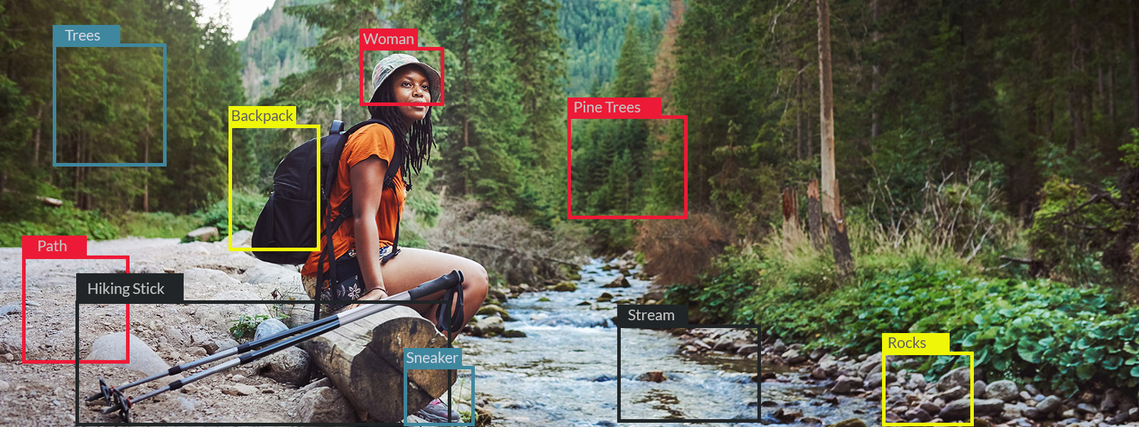 Image Recognition Accuracy Study - Featured Image