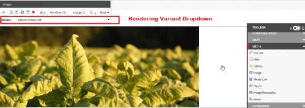 Rendering Variant Dropdown