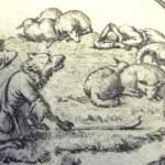 """Le loup devenue berger"" (livre III)."