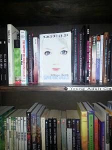 last bookstore francesca lia block