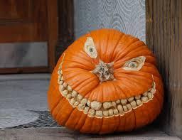 toothy pumpkin