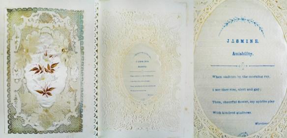 "Card on leaf [14], ""MacKenzie 1874"", including a"