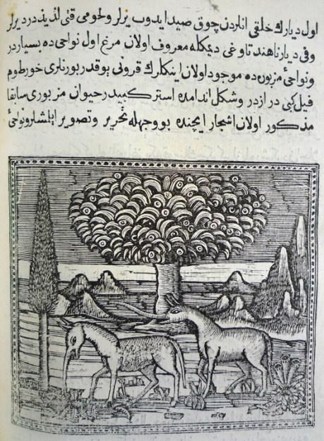 Tapirs? Leaf 46, verso