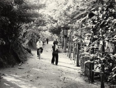 Path in Cai Rang, Vietnam