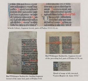 WHS.B36.vellum.fragment
