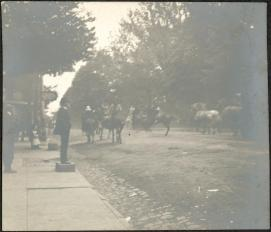 """Printed on Verso: """"Pawnee Bill in Princeton. May 15th 1899. The Fort Sill stage-coach runs away."""""""