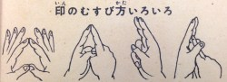 Fig. 13: Mudras used in ninjutsu.