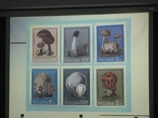 Postage stamps of Poland!