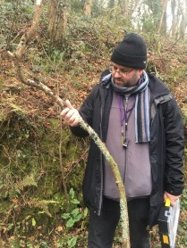 LAFF project leader, Brian Douglas inspects a chewing-gum-like growth on this fallen branch.