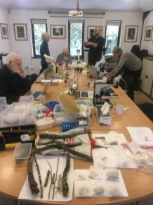 Now onto the microscope workshop: participants, equipment, and numerous collected samples for inspection.