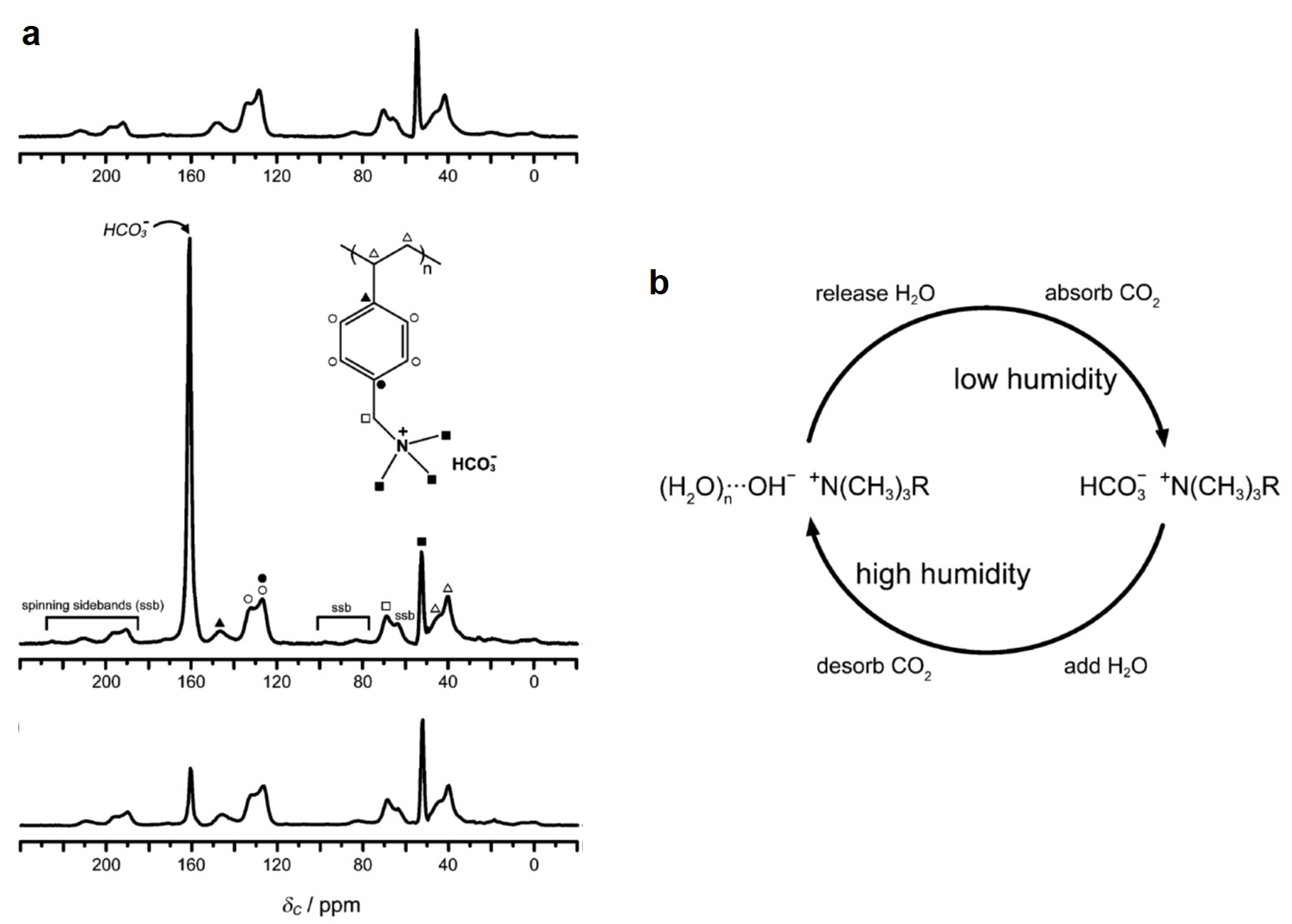 hight resolution of  a the solid state 13c nmr spectra of the humidity swing polymeric absorbent structure shown in the inset of the middle spectrum itself top