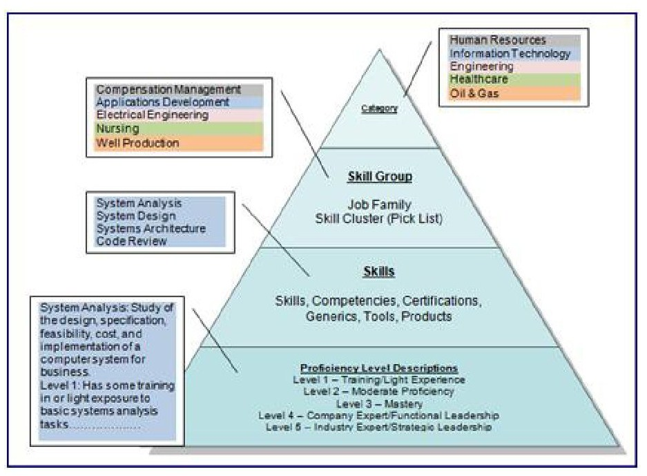 What Is Skills Management All About – Skills Architecture