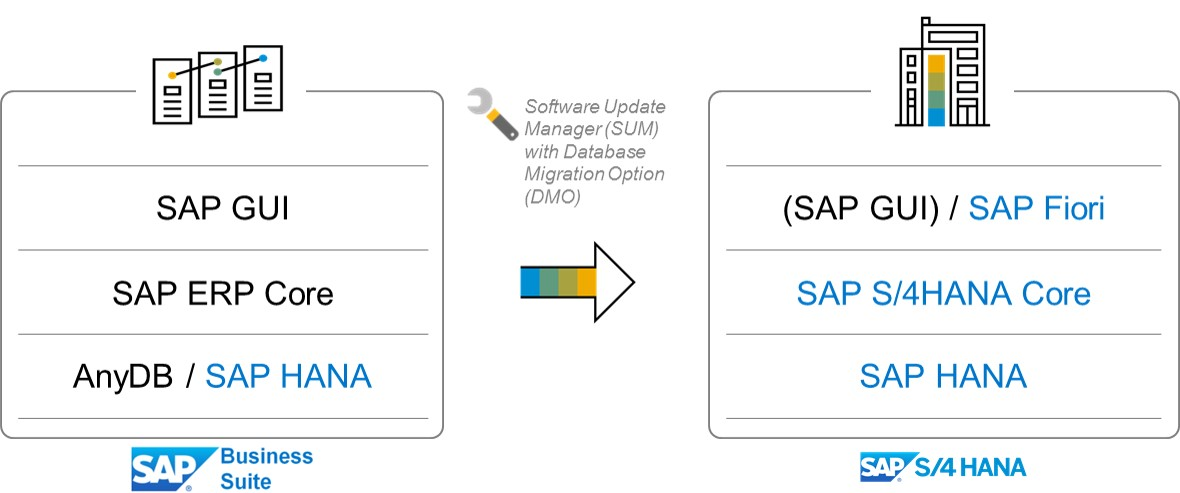How to find my path to SAP S/4HANA – Understand the available transition options | SAP Blogs