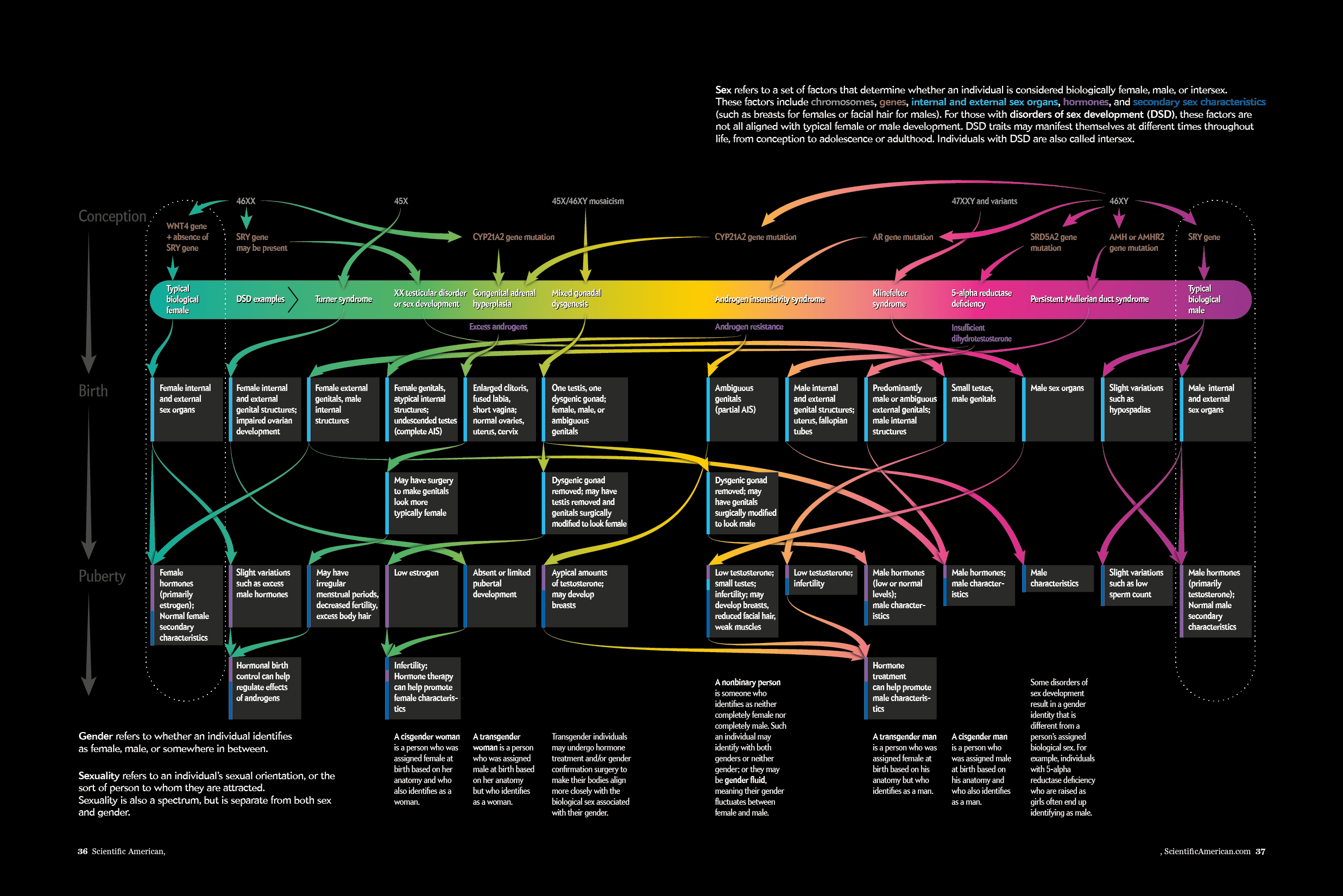 elements of communication diagram tekonsha wiring visualizing sex as a spectrum - scientific american blog network