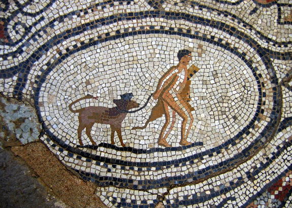 Image result for Ancient Greek dog