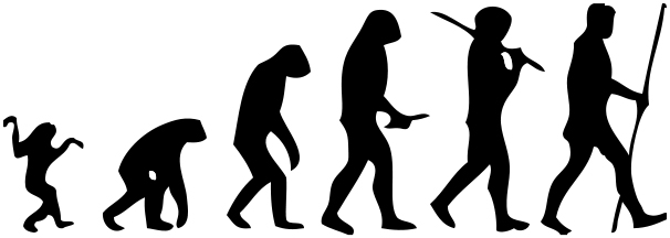 Homo Sapiens' Family Tree May Be Less Complicated Than We
