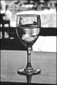 drink & draw wine