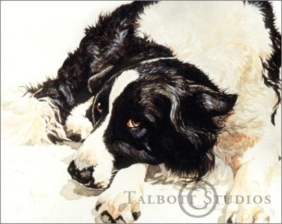 Portrait of Willy, watercolor painting by Eugenia Talbott, Talbott Studios, Talent, Oregon