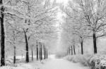 Writer's Room winter Workshop 2016 Announcement