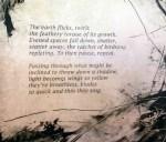 Barbara Mason, Poem by Paulann Petersen, Voluptuaries, Solarplate Intaglio