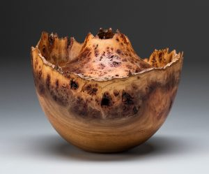 Elm Burl by Dan Tilden