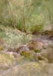 Joan Franklin Rocky Creek
