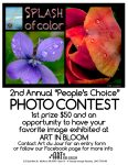 People's Choice Photography Contest at Art du Jour during Art in Bloom