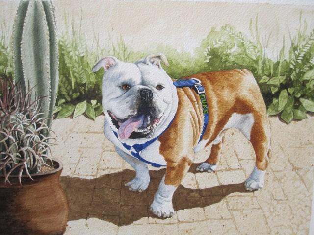 Nancy Graham's painting Duke of the Desert
