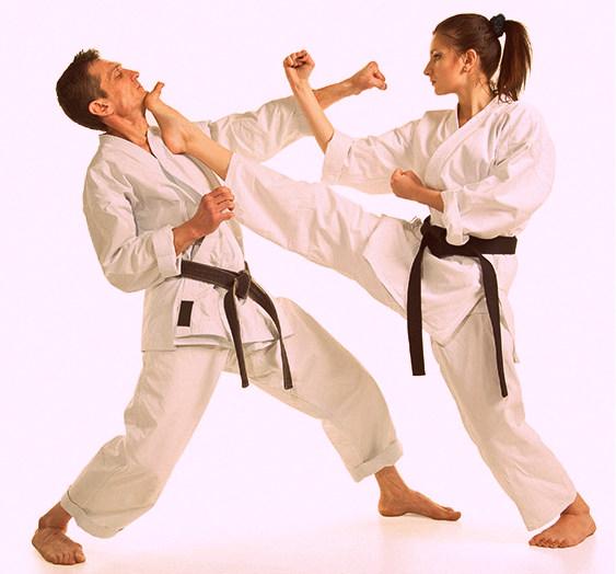 Body Combat- Mixed Martial Art Workouts