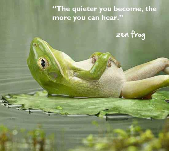 Resultado de imagen de zen frog