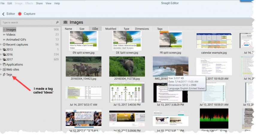 screenshot of my Snagit Library