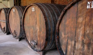 Cafayate, wine barrels at Nanni