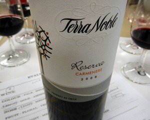 Carmenère, the signature grape of Chile