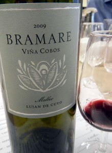 The Malbec, the signature grape of Argentina, was velvety, smooth, dark berry, and full of flavour