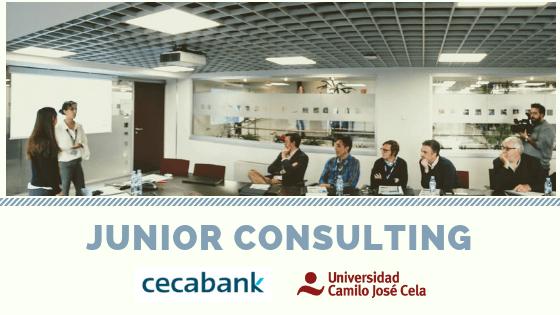 Junior Consulting