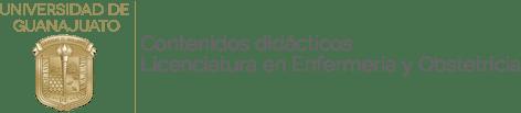 Contenidos didácticos de la Licenciatura en Enfermería y Obstetricia – Universidad de Guanajuato