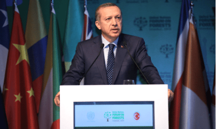Highlights from the UN Forum on Forests — #UNFF10 — in Istanbul