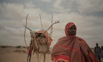 The Women Shepherds of Somaliland